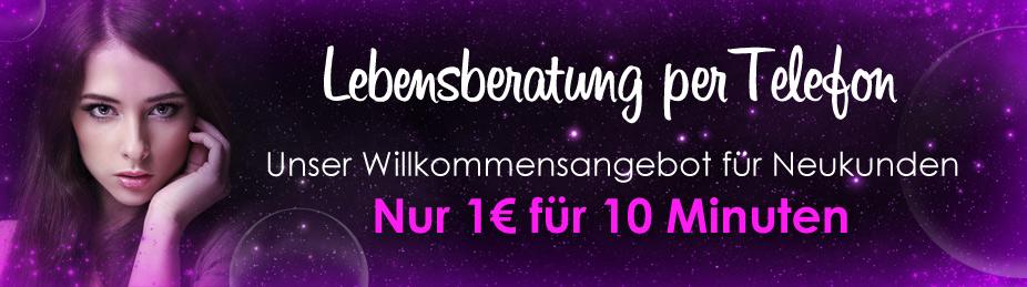 willkommen_display kit2